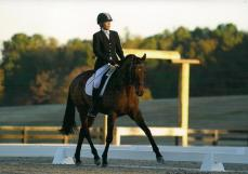 ChattHillsDressageOct2014 001