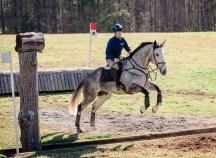 Zeb at Poplar (35 of 97)