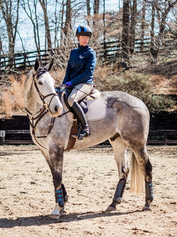 Competition Horses – Little Kentucky Farm