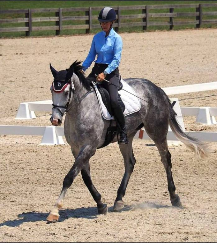 LouisZebDressageJune2016